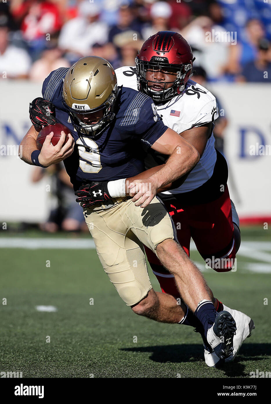 f5af576fa2b46e Cincinnati Bearcats DT  96 Cortez Broughton sacked United States Naval  Academy QB  9 Zach Abey during a NCAA football game between the United  States Naval ...