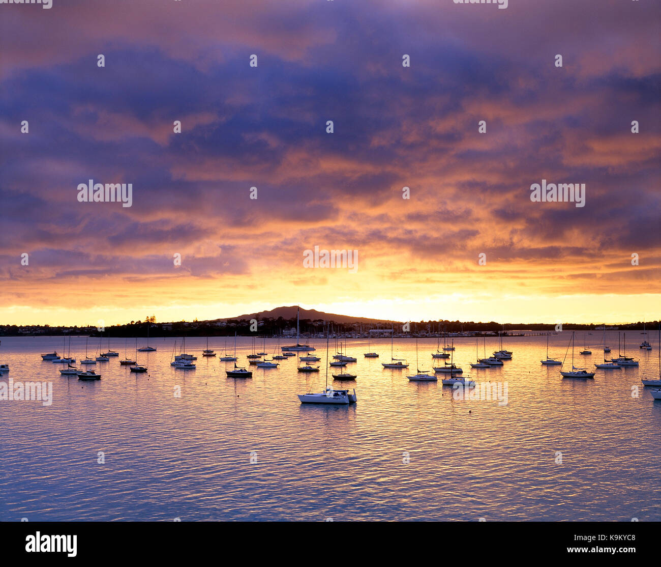 New Zealand. North Island. Auckland. Rangitoto. Devonport. Harbour view ith moored yachts at sunrise. - Stock Image