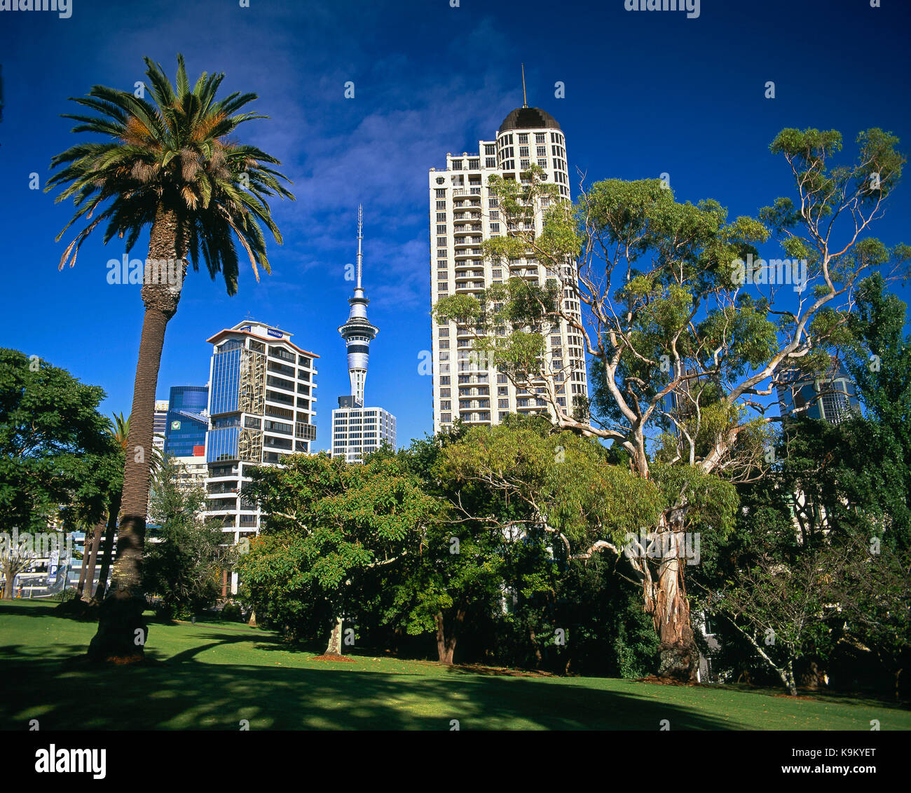 New Zealand. Auckland. Low angle view of city buildings from Myers Park. - Stock Image