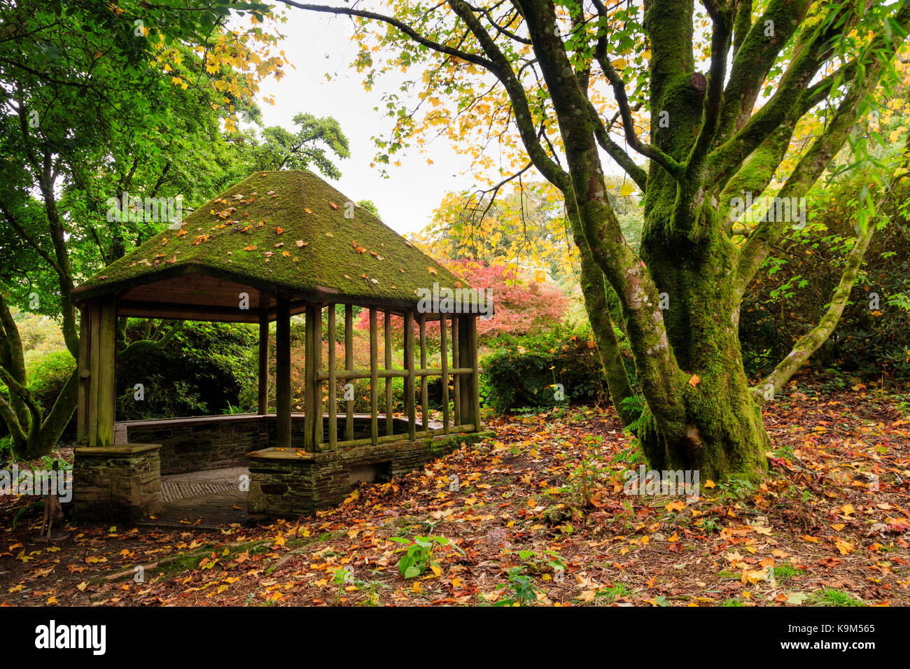 Wood and stone summerhouse at The Garden House, Buckland Monachorum, Devon,UK, in early Autumn - Stock Image