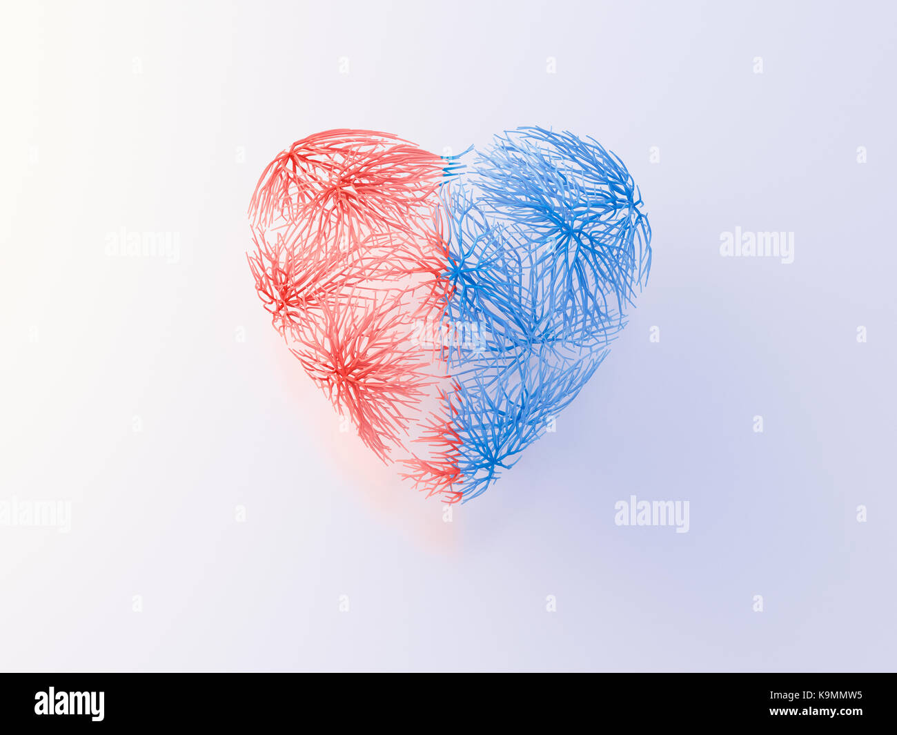 Heart with red and blue veins - Stock Image
