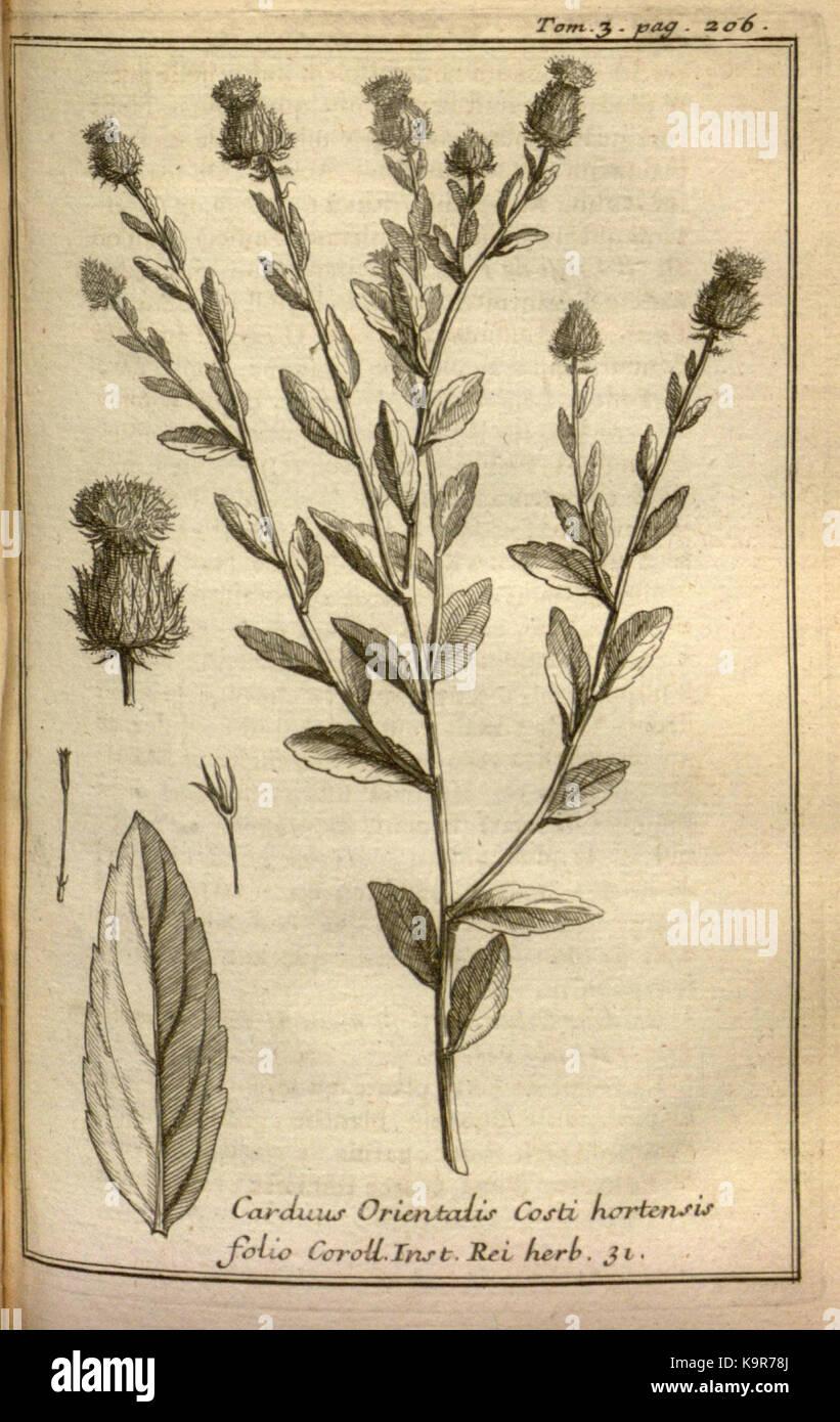 Relation d'un voyage du Levant (Plate 29) (7893905854) - Stock Image