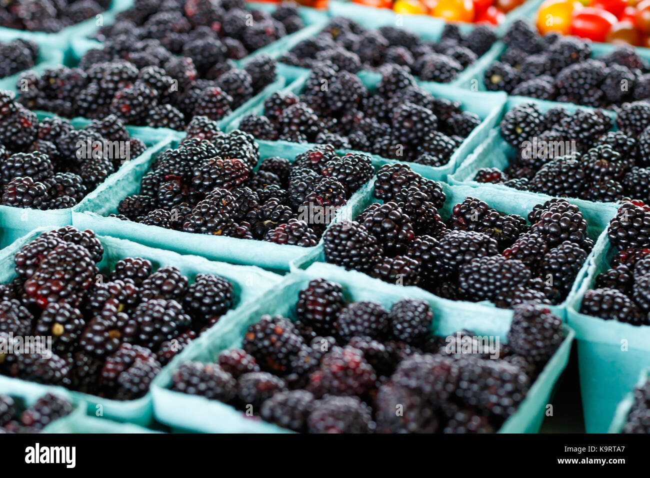 Fresh Blackberries at a produce stand. - Stock Image