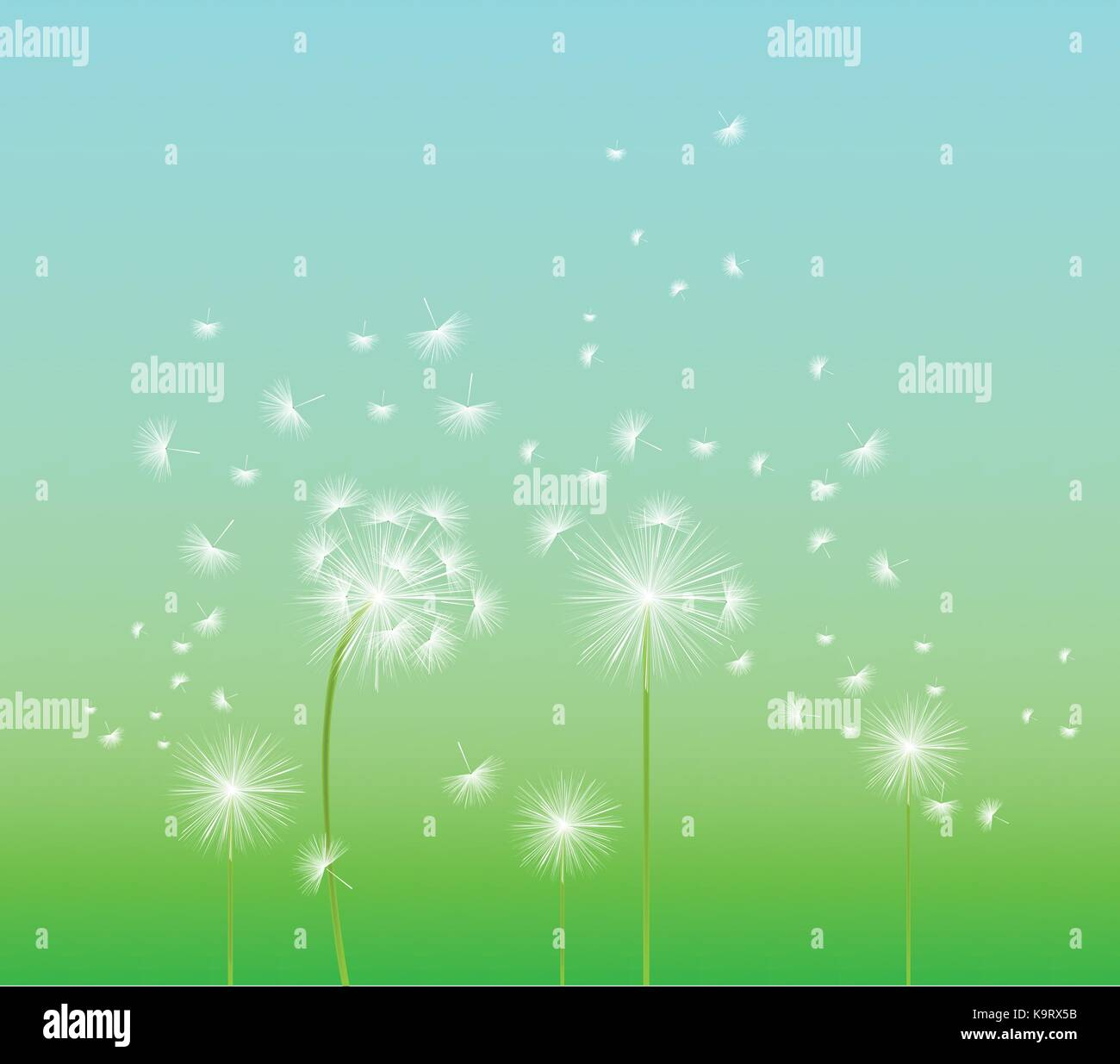 8dba208ef4e3b spring background with white dandelion Stock Vector Art ...