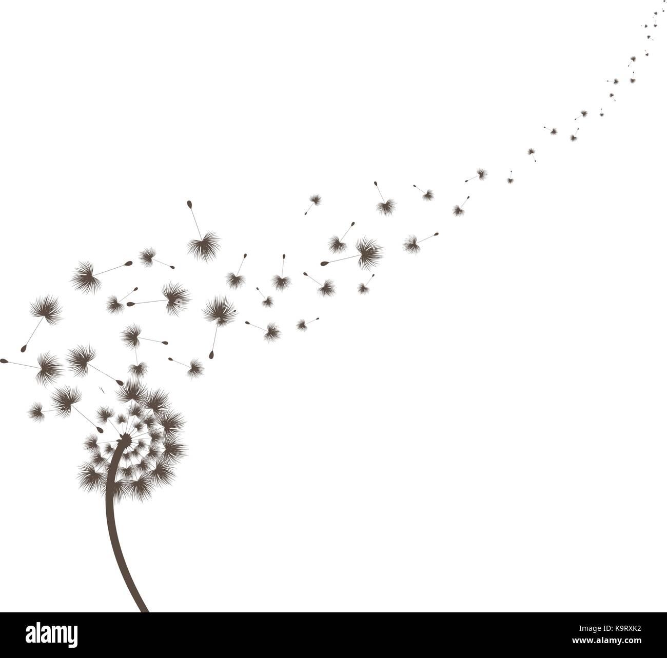 Blow Dandelion - Stock Vector