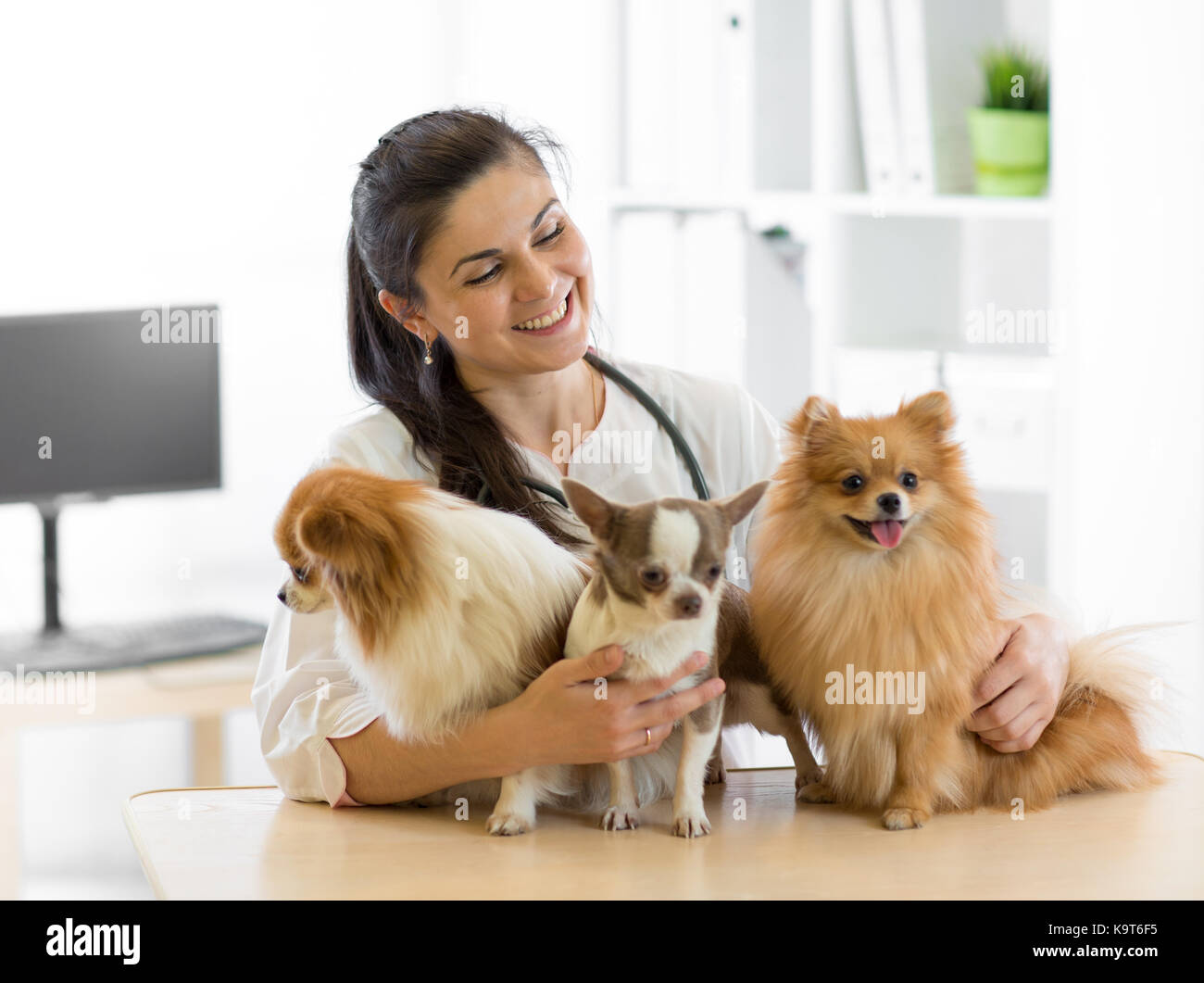 Veterinarian embraces three dogs in vet clinic - Stock Image
