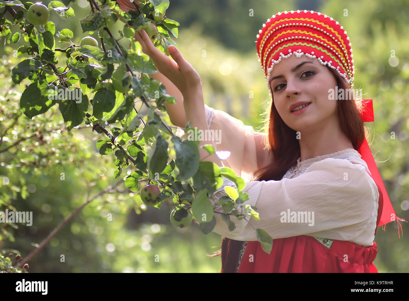 Slav in traditional dress collects the harvest of apples - Stock Image