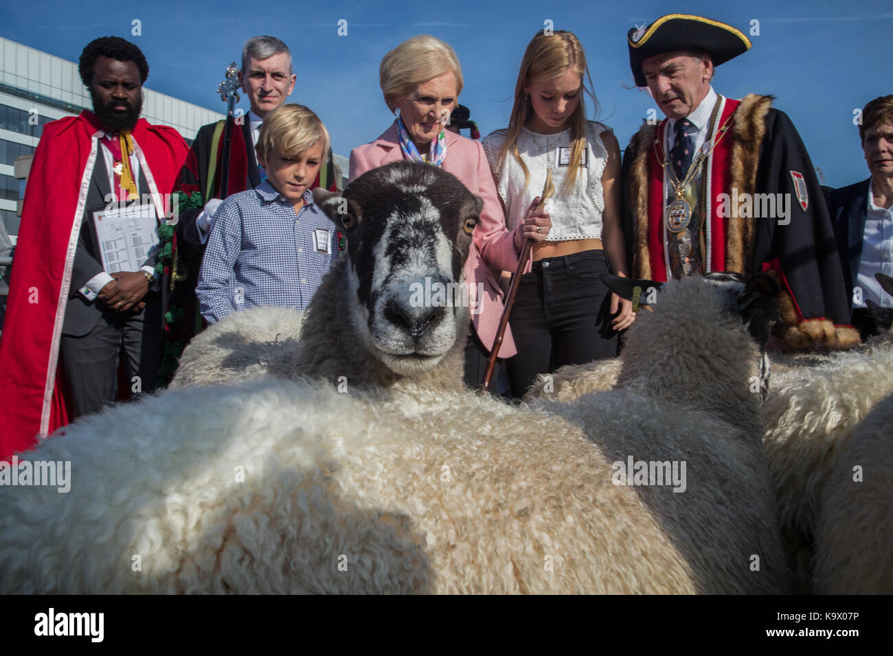 London, UK. 24 September 2017. Celebrity chef Mary Berry joins Freeman of the City of London driving sheep over Stock Photo