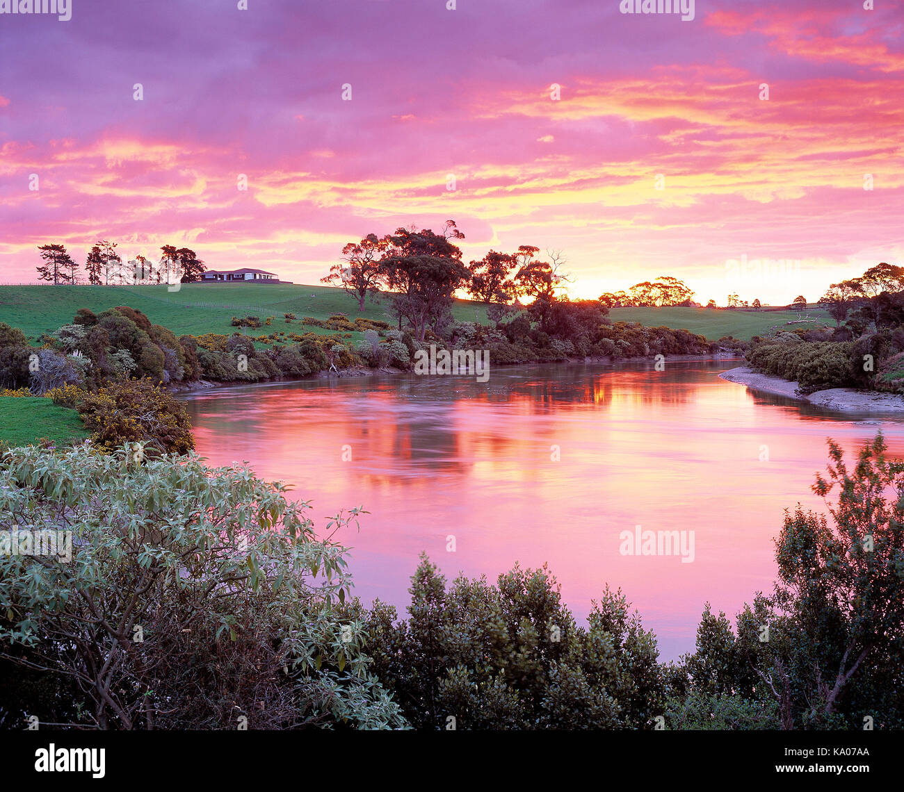 New Zealand. Auckland Region, Rural property with water at sunrise. - Stock Image