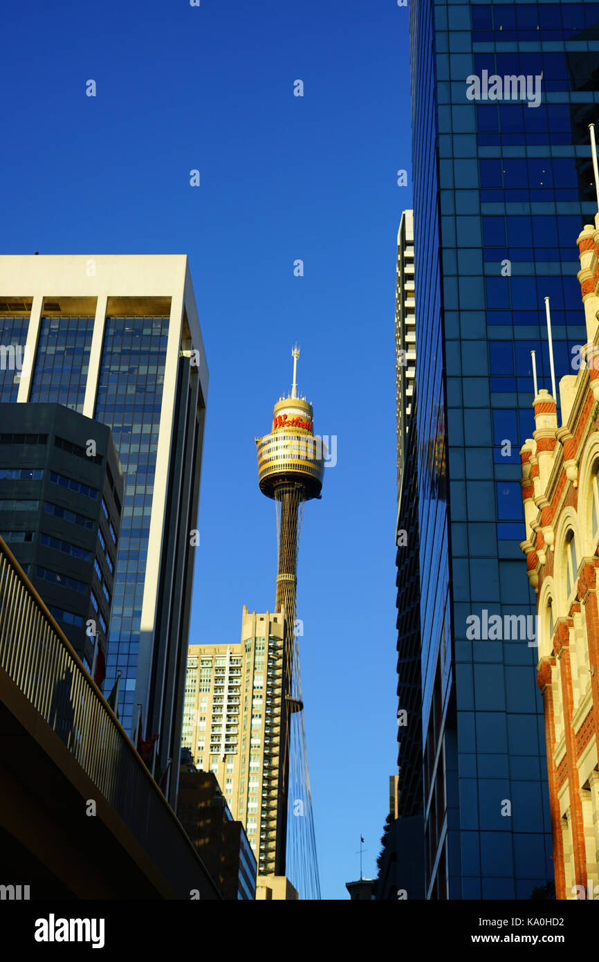 View of the landmark Sydney Tower (Sydney Tower Eye or Westfield Centrepoint), a tall observation tower located - Stock Image