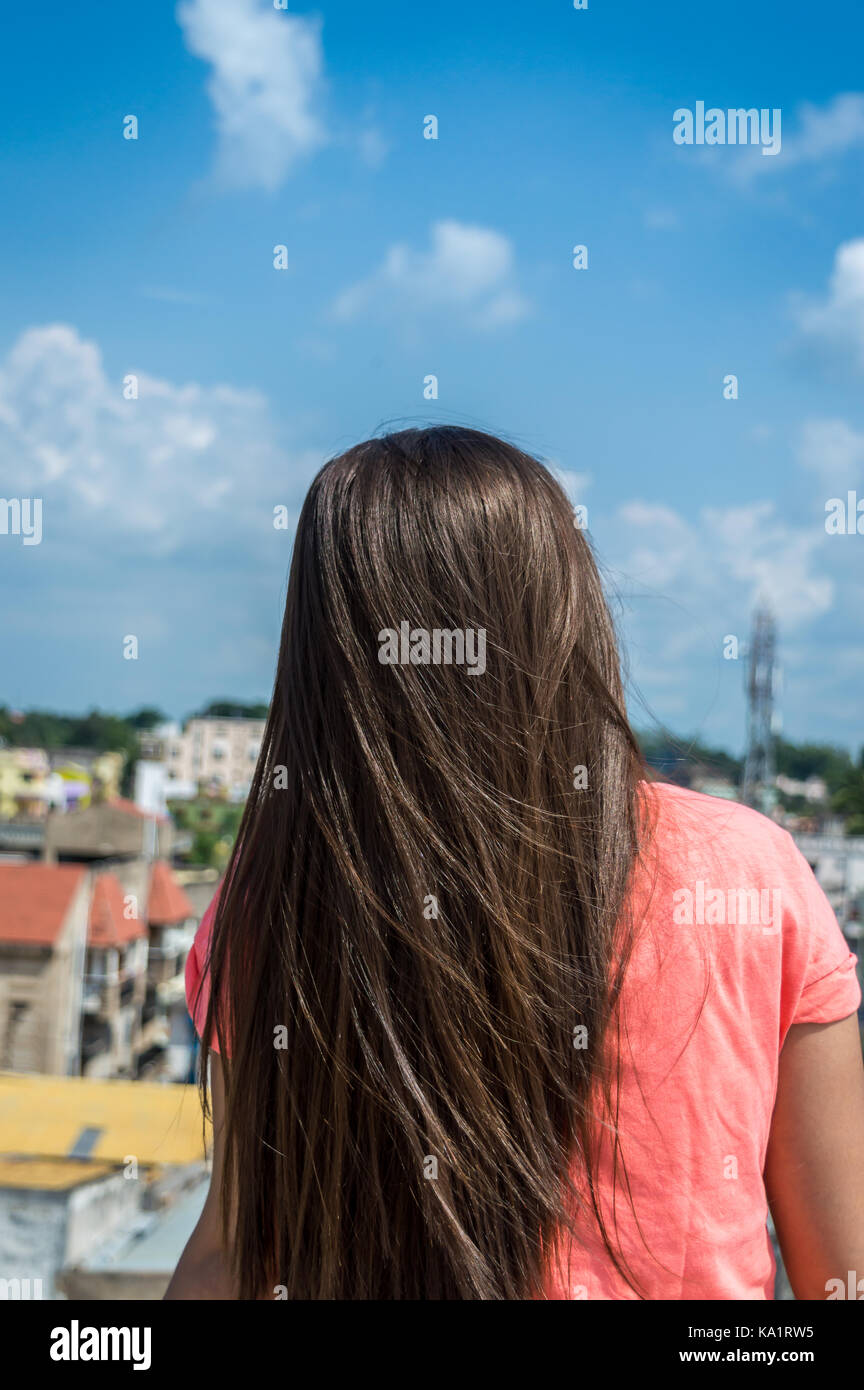 PIcture of a girl's hair. Pony tail. - Stock Image