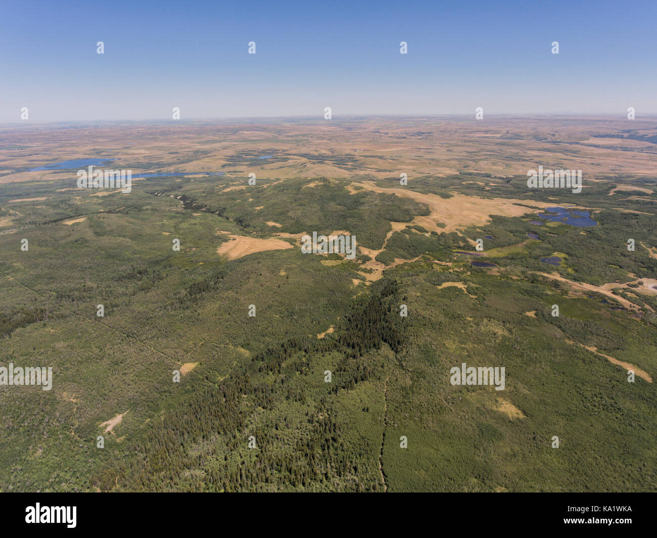 Aerial view to east across western Great Plains from above the Chief Mountain Highway (MT 17), Glacier County, Montana, - Stock Image
