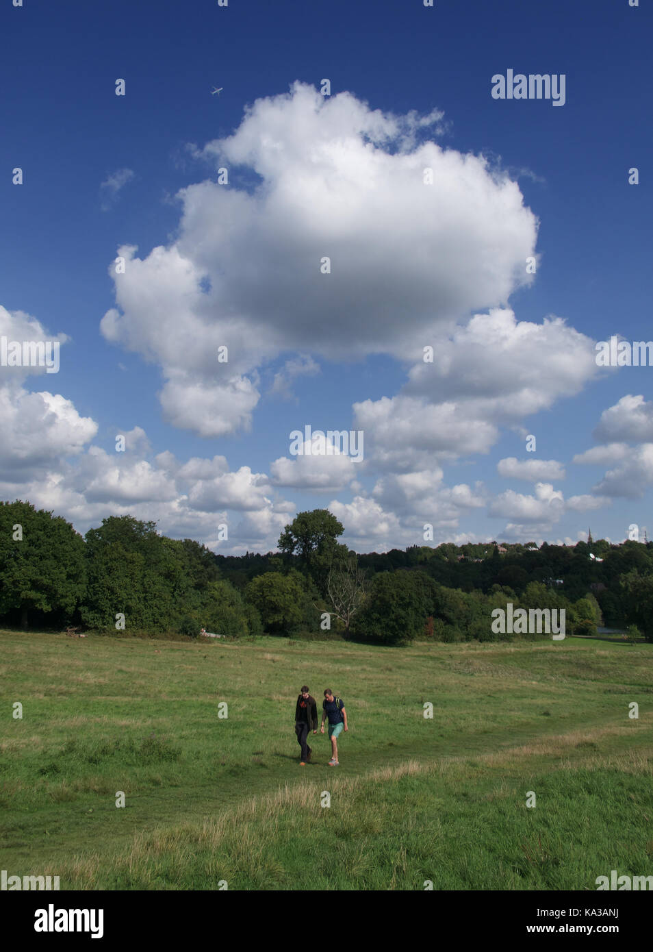 View across Hampstead Heath from Parliament Hill - Stock Image