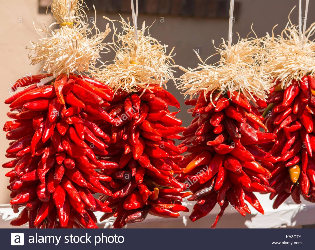 Mature chilean hung