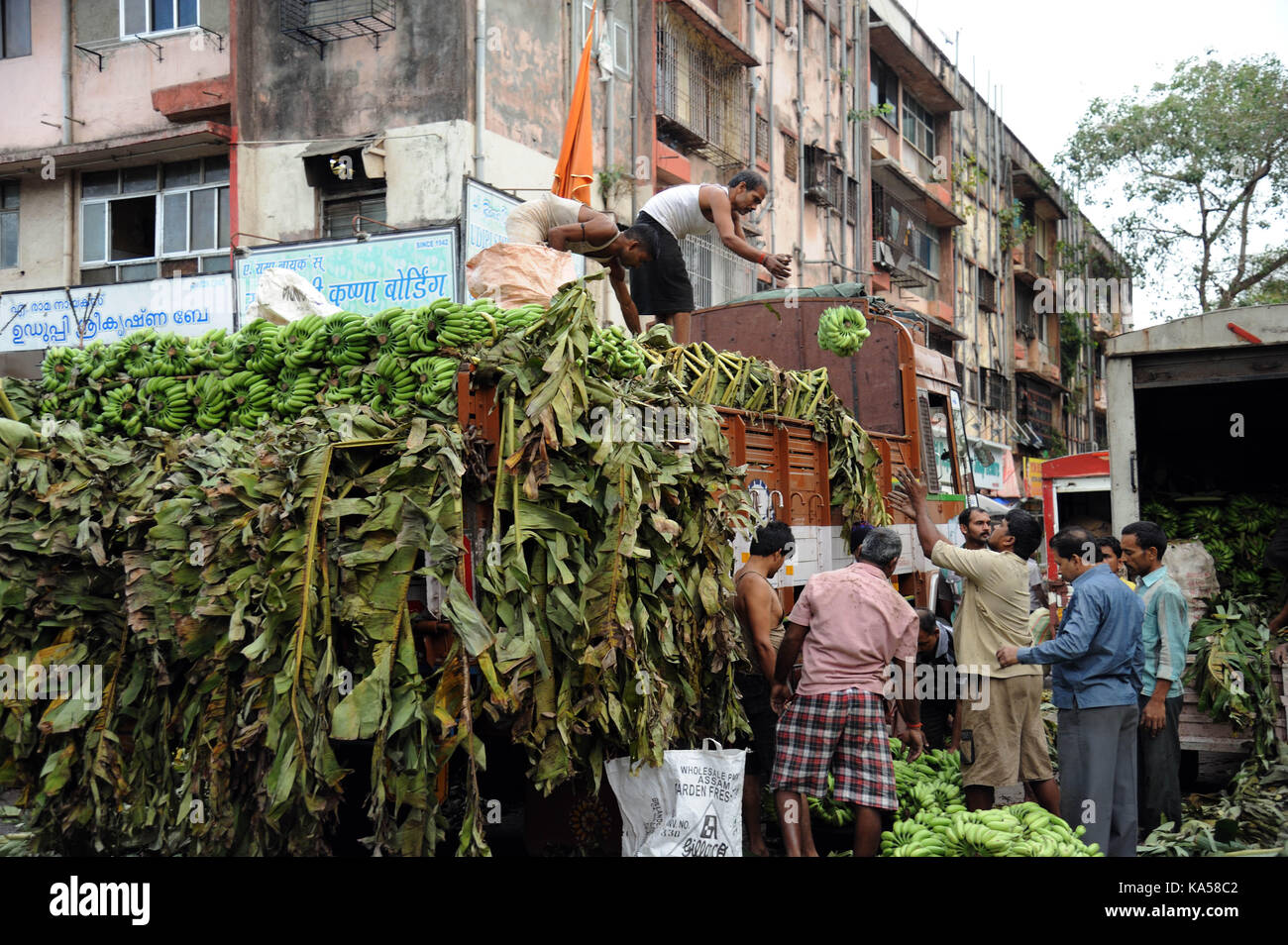 Wholesale Dealers Stock Photos & Wholesale Dealers Stock Images - Alamy