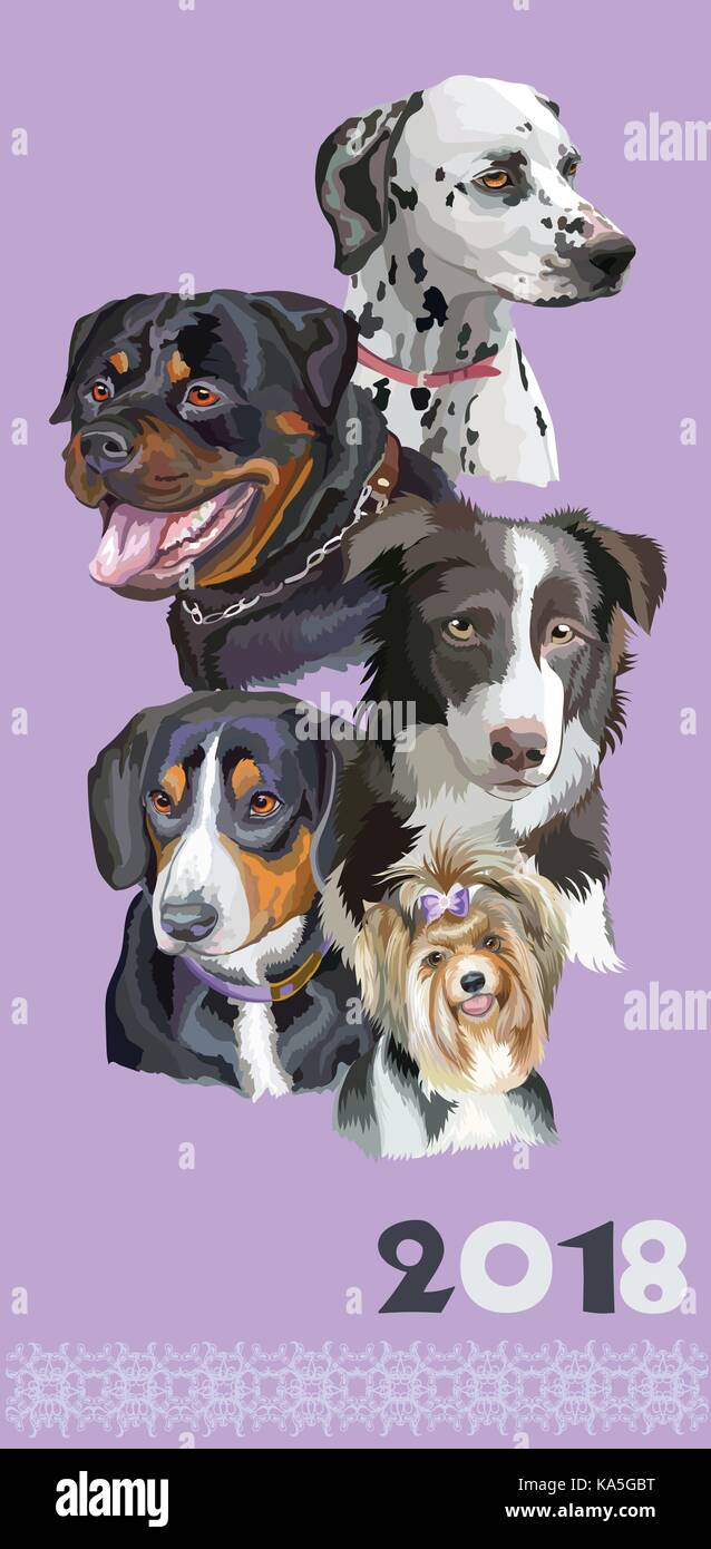 Vertical postcard with dogs of different breeds (Rottweiler; border collie; Dalmatian; Biewer terrier, Entlebucher - Stock Vector