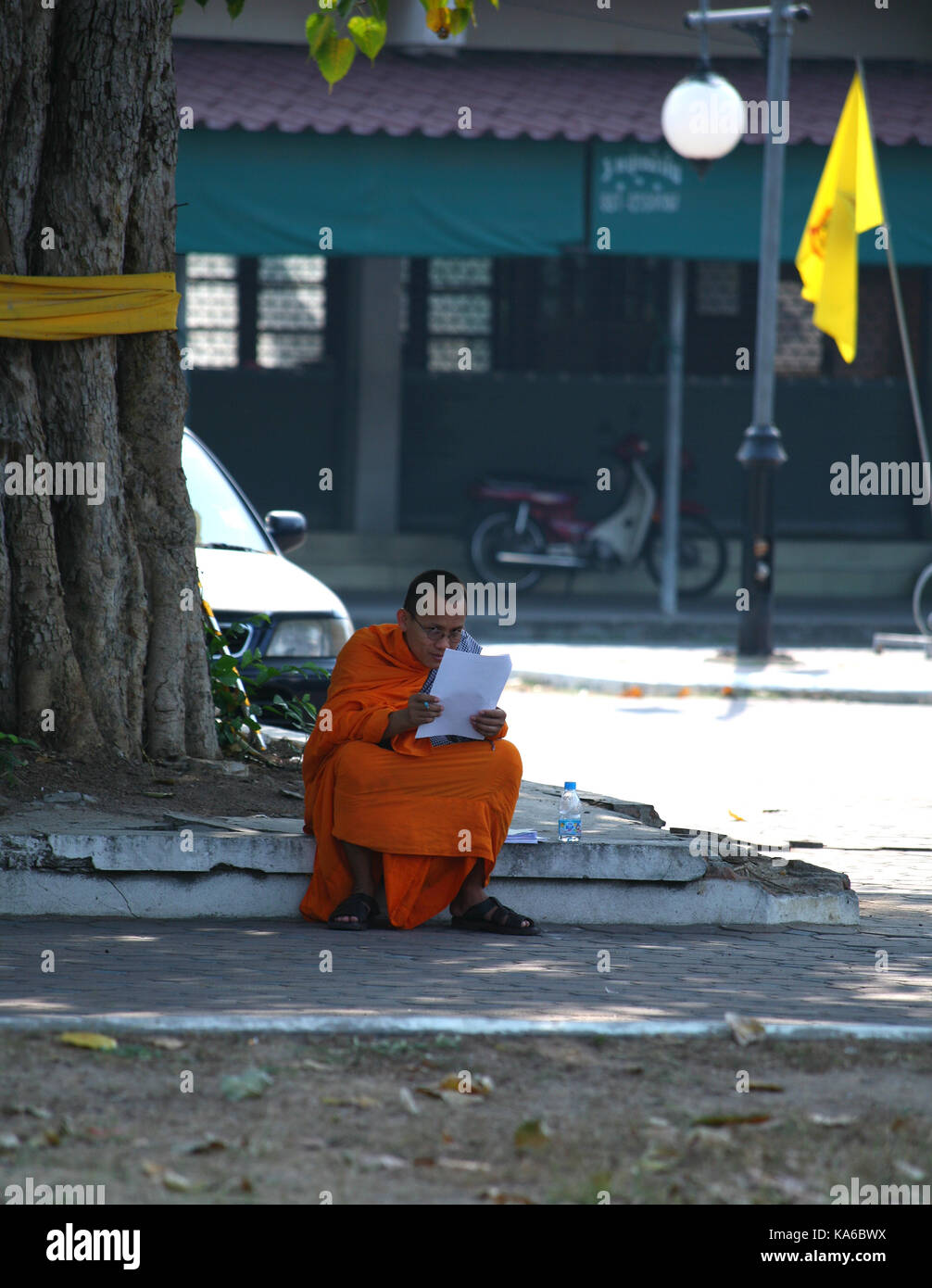 Daily life in a Buddhist monastery. Buddhist monk reads a book under a tree. - Stock Image