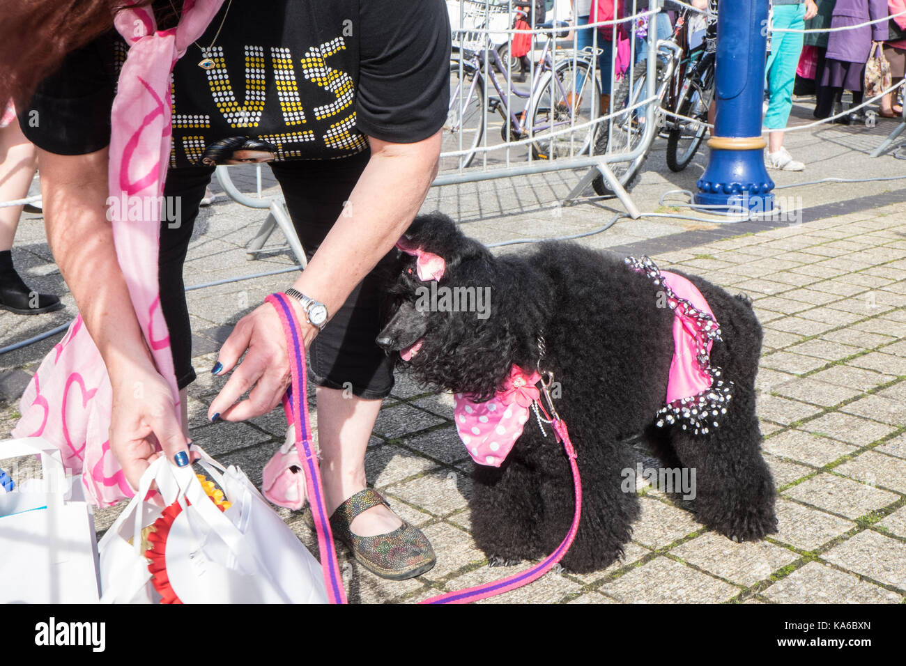 At,Elvis,Festival,Elvis Festival,Porthcawl,Bridgend,county,South,Wales,UK,U.K.,Europe, Stock Photo