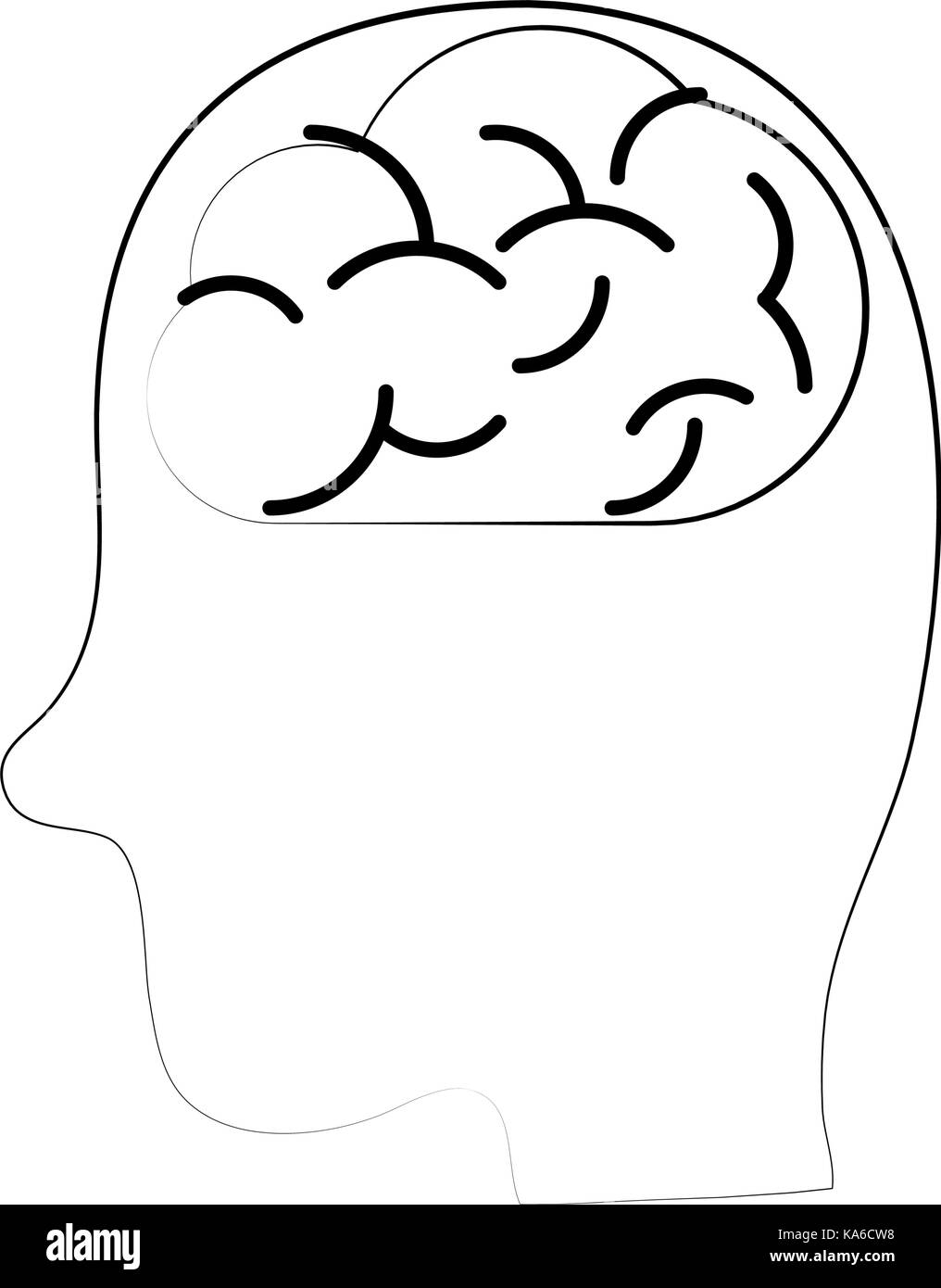 medical human brain - Stock Image