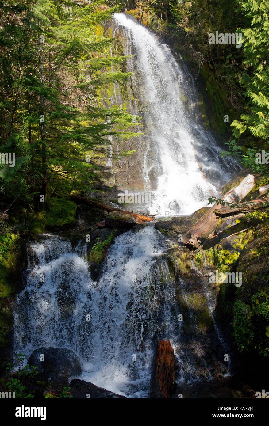 Falls Creek, a  waterfall in Mount Rainier national park, Washington State, USA - Stock Image