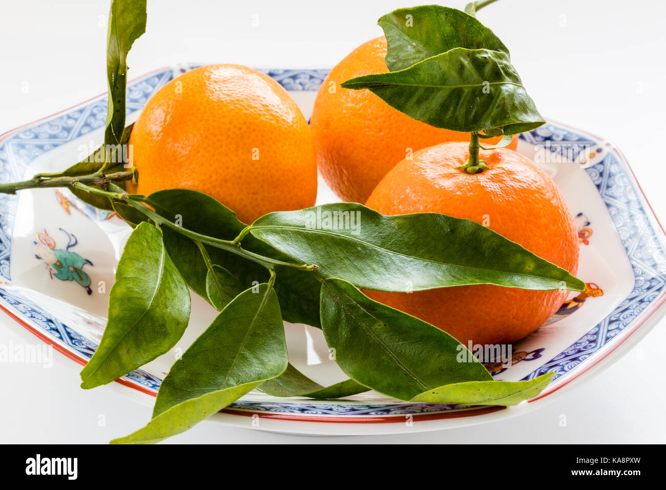 England. Fruit, three oranges still attached to the vine, branch and leaves, on Chinese heptagon, seven-sided plate. - Stock Image