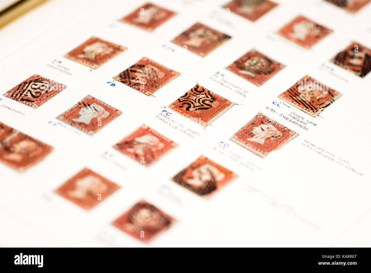 England. Victoria Penny red stamps with annotations in stamp album. Stamp collecting hobby. Philately. - Stock Image
