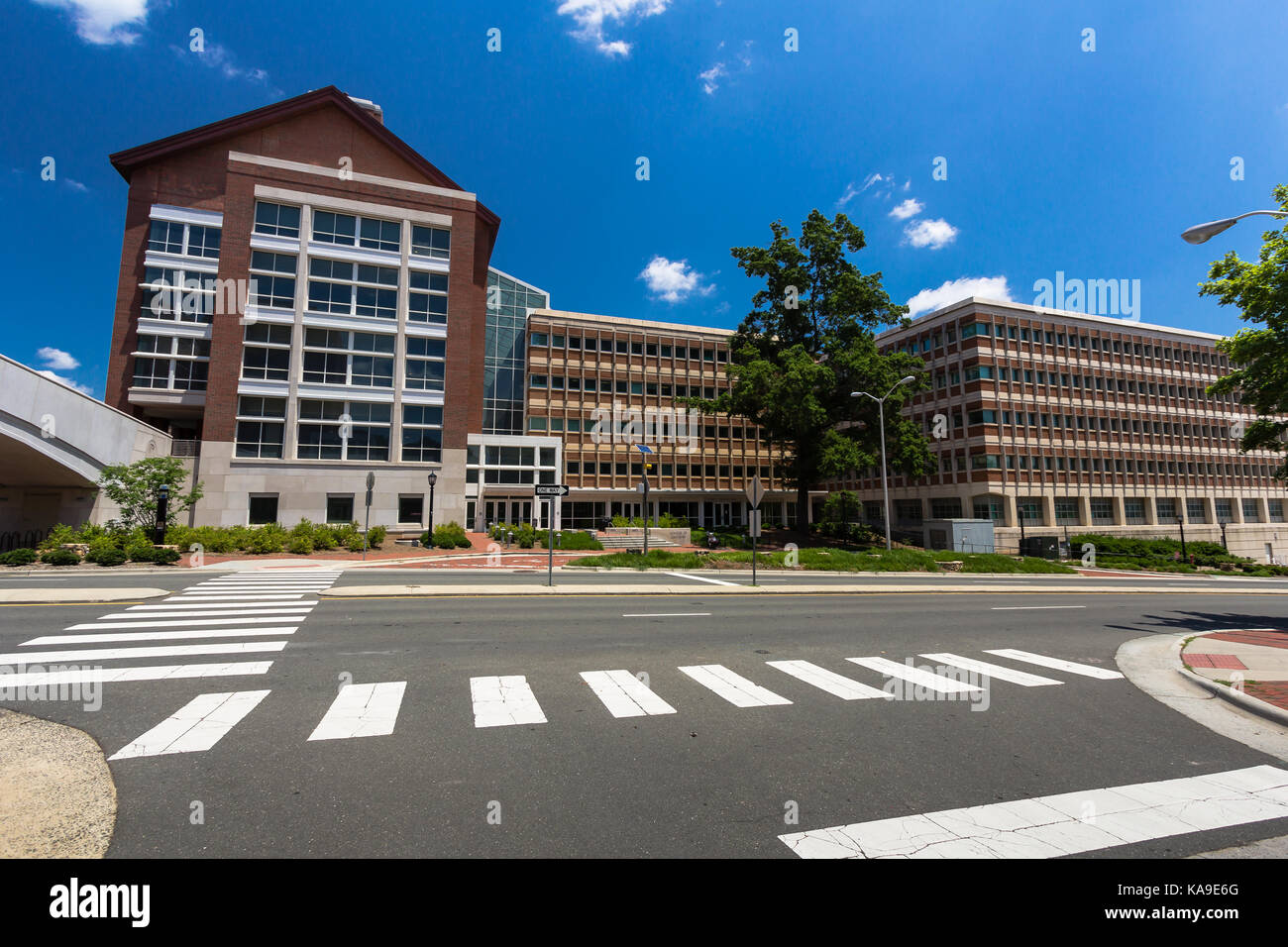 Koury Oral Health Sciences Building, Brauer Hall and Tarrson Hall at the University of North Carolina at Chapel - Stock Image