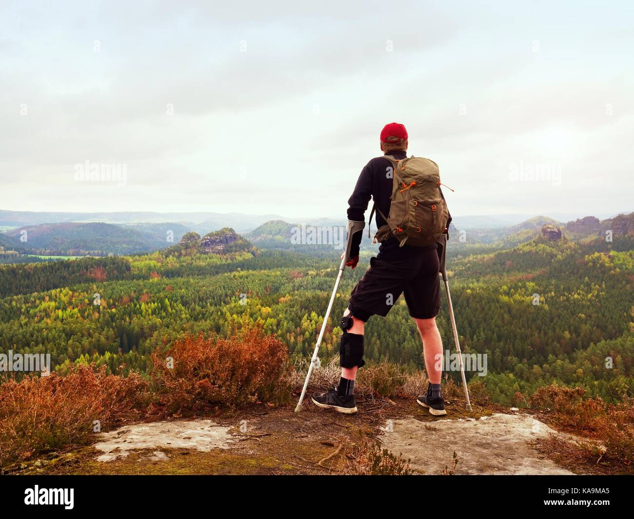 Man hiker Wearing Supportive Leg Brace and gainst the cruthes. Natural forest park in background - Stock Image