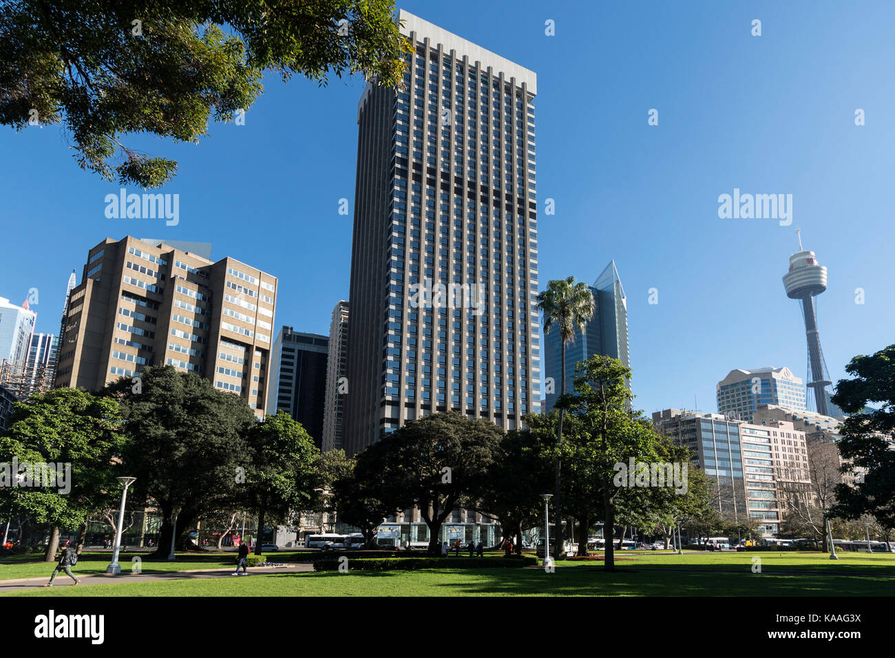 Hyde Park in the centre of  Sydney  in New South Wales, Australia - Stock Image