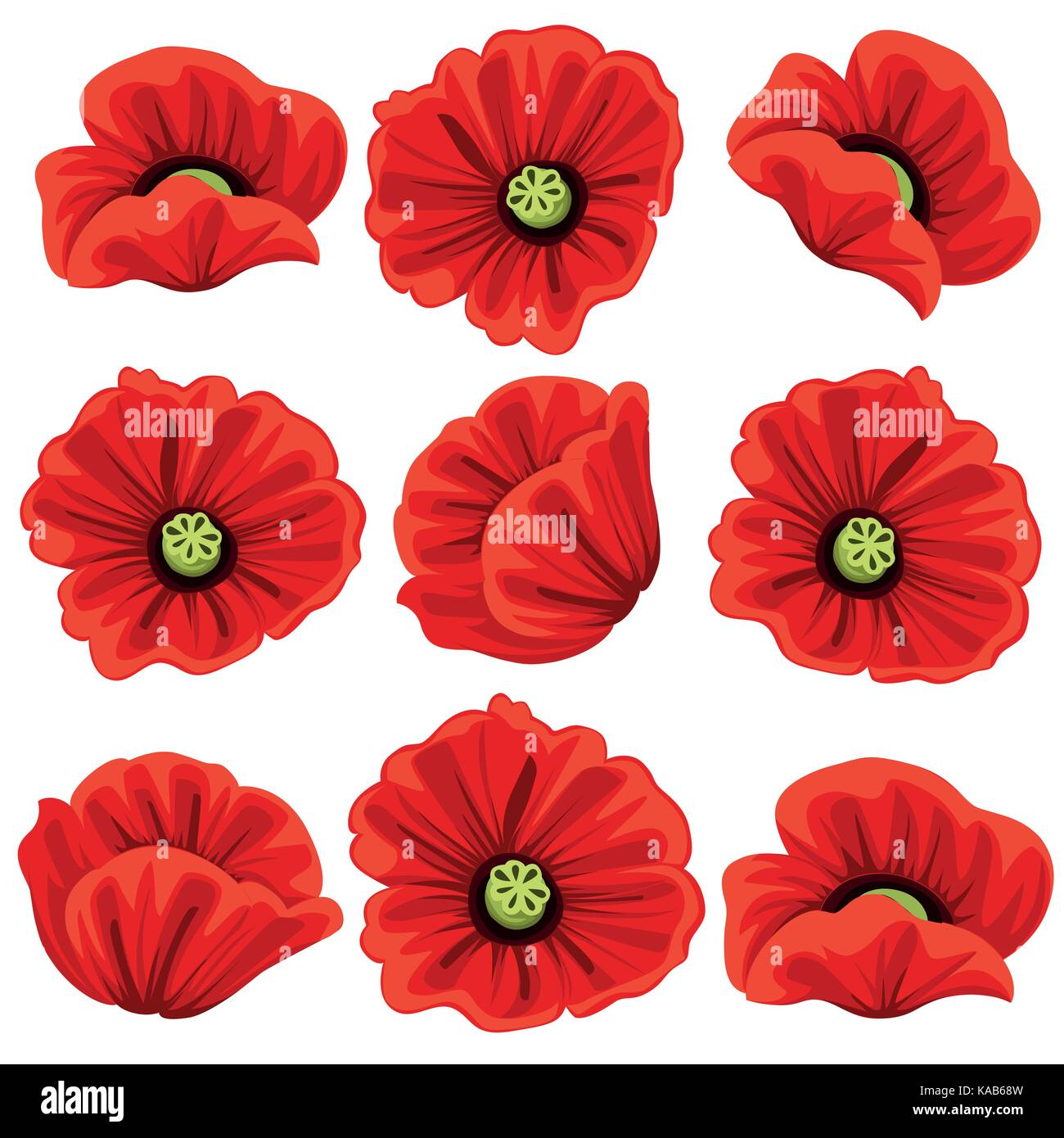 Poppy Flowers Icons Set Vector Isolated Botanical Symbols Of Stock