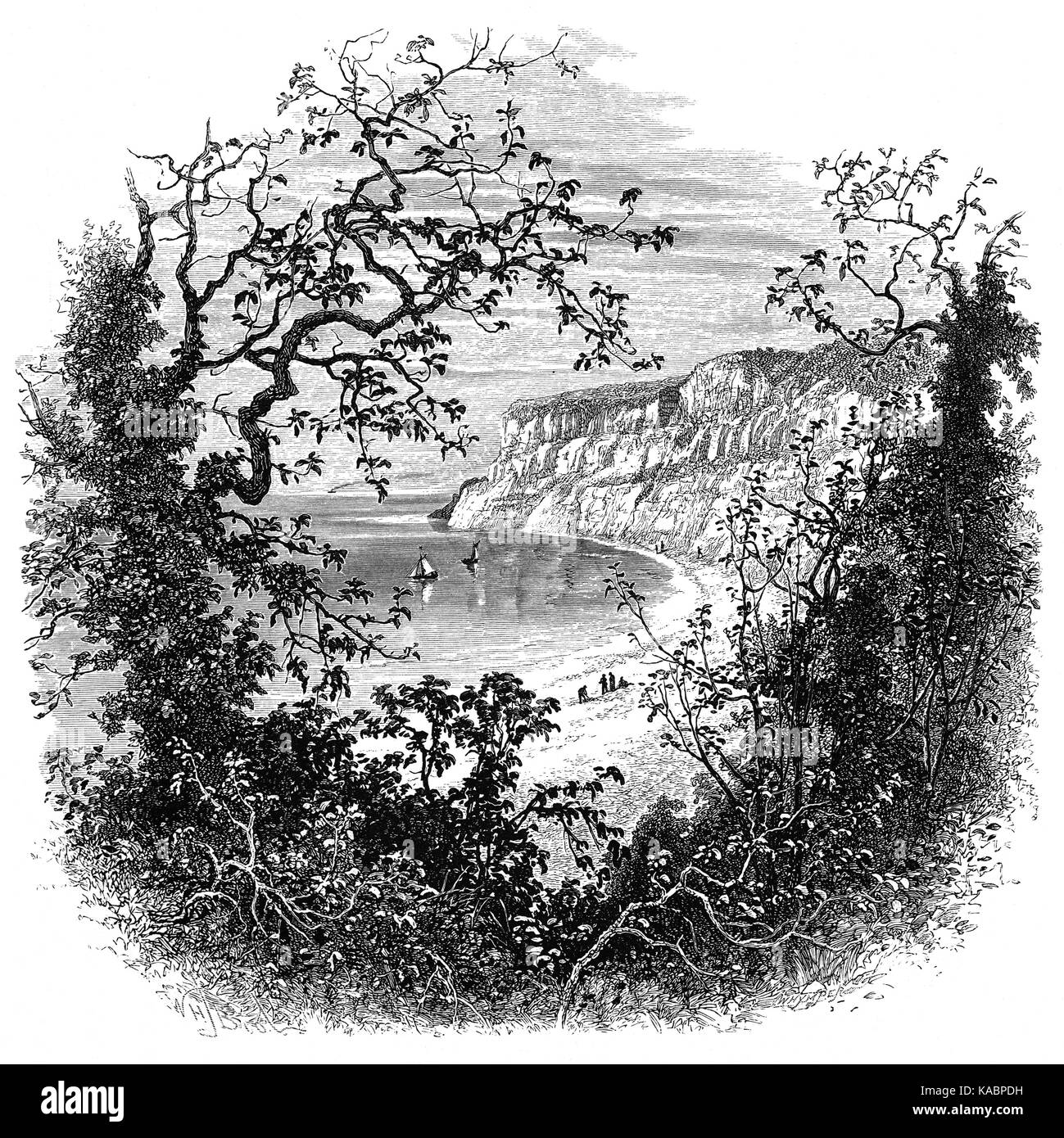 1870: Shanklin Chine is a  wooded coastal ravine, it contains waterfalls, trees and lush vegetation. The tourist - Stock Image