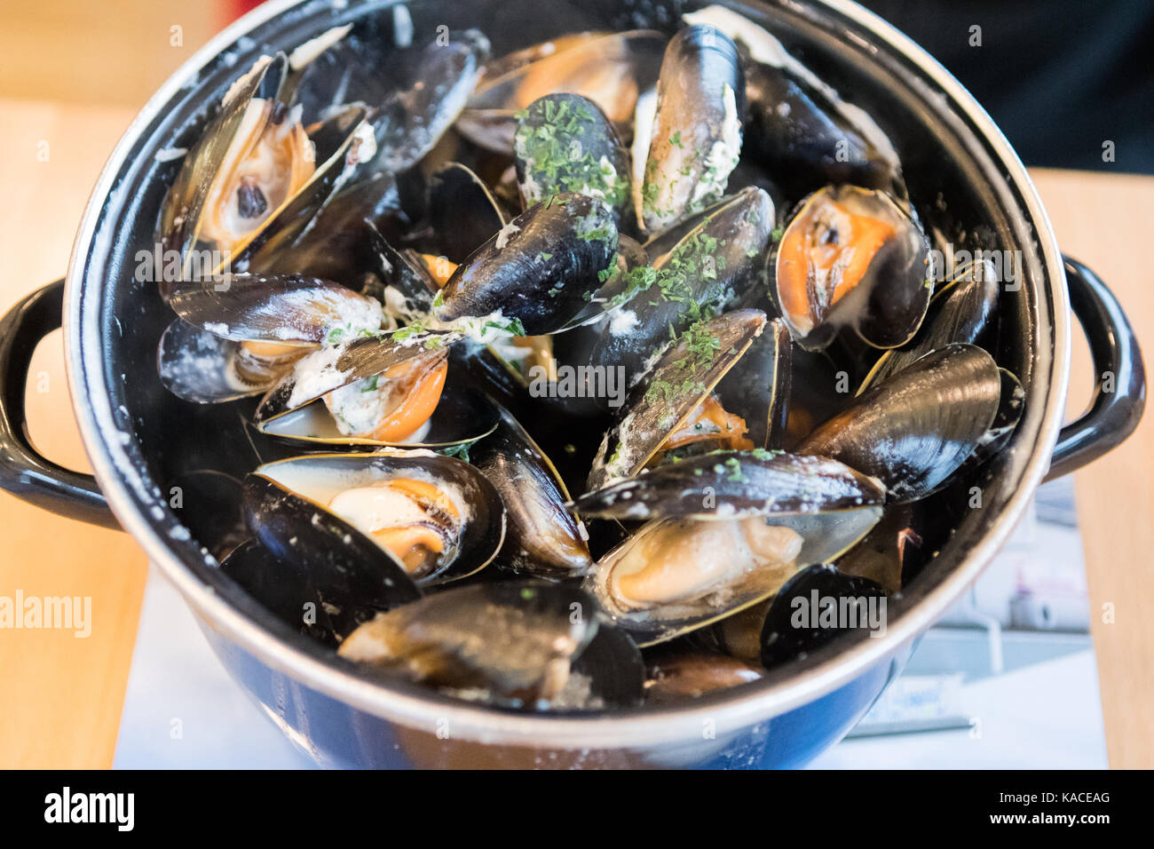 Moules Mariniere from Frankie's Fish and Chips, Brae, Shetland, Scotland , UK - Stock Image