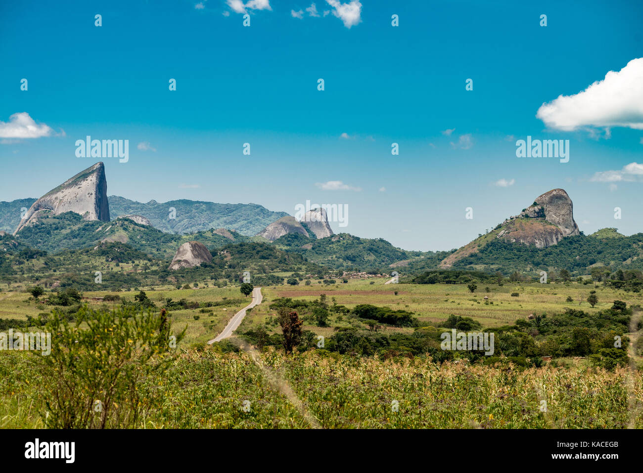 Africa - Stock Image