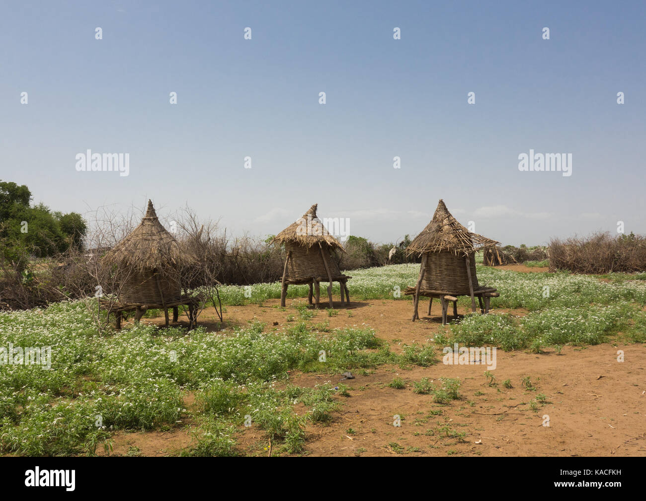 Traditional Hut in a Kangate Village, Omo Valley, Ethiopia - Stock Image