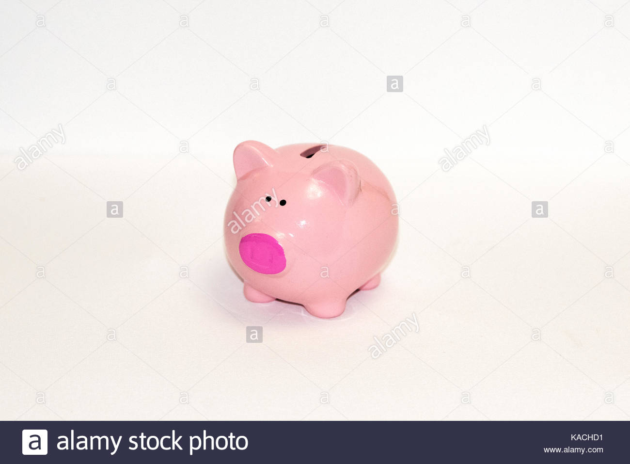pink piggy bank in a white background - Stock Image