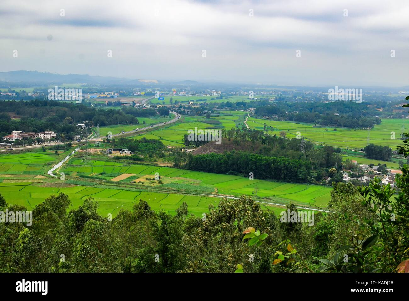 Green Terraced Rice Field In Quang Ngai Vietnam Stock Photo Alamy