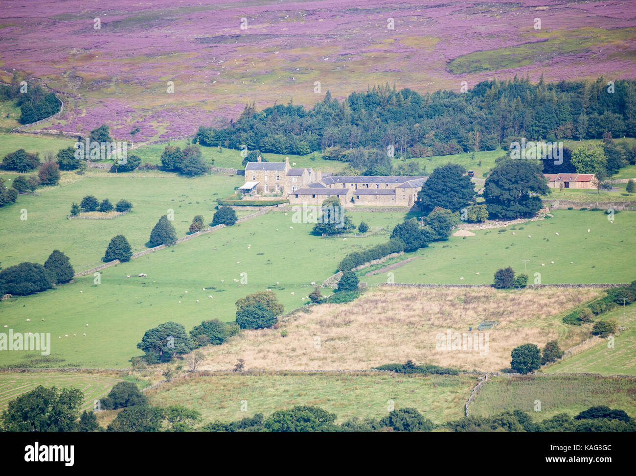 View over Westerdale from Castleton Rigg. North York Moors National Park, North Yorkshire, England. UK - Stock Image