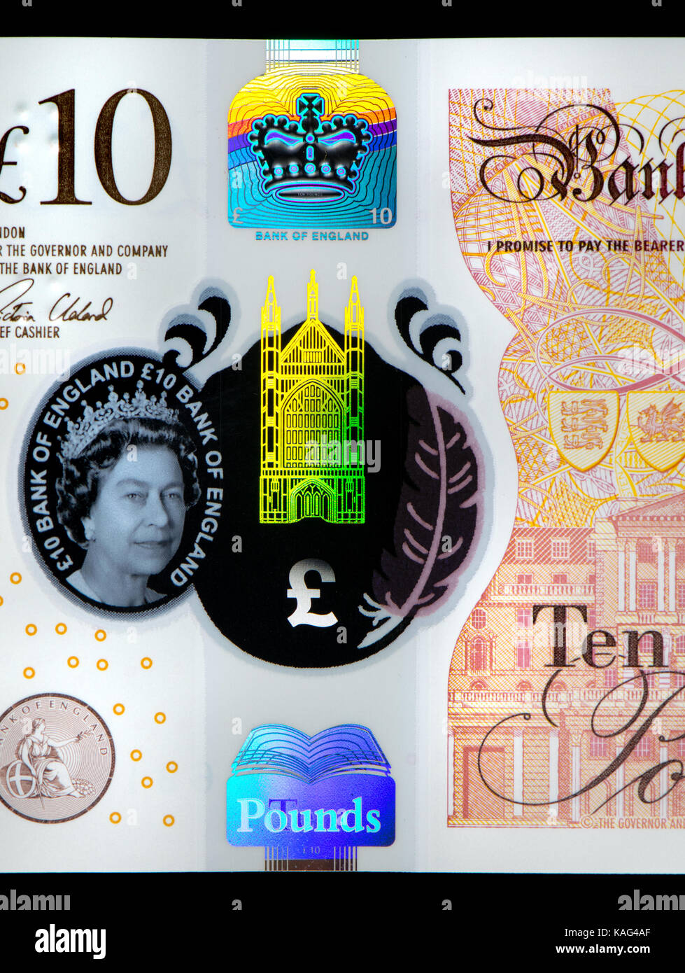 New Bank of England polymer £10 note (September 2017) showing security feature - window and gold foil Winchester - Stock Image