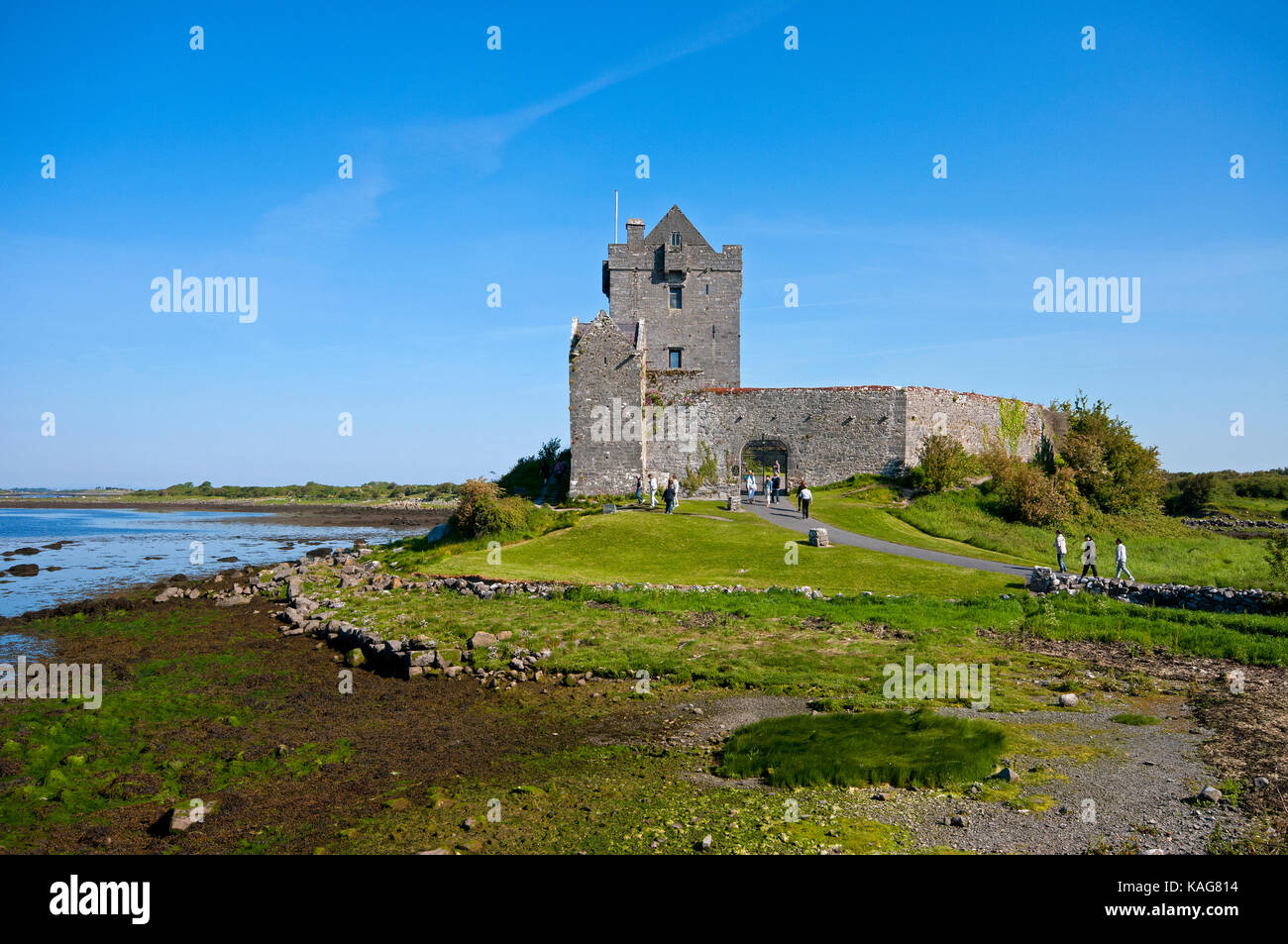 Dunguaire castle, Kinvarra, County Galway, Ireland - Stock Image
