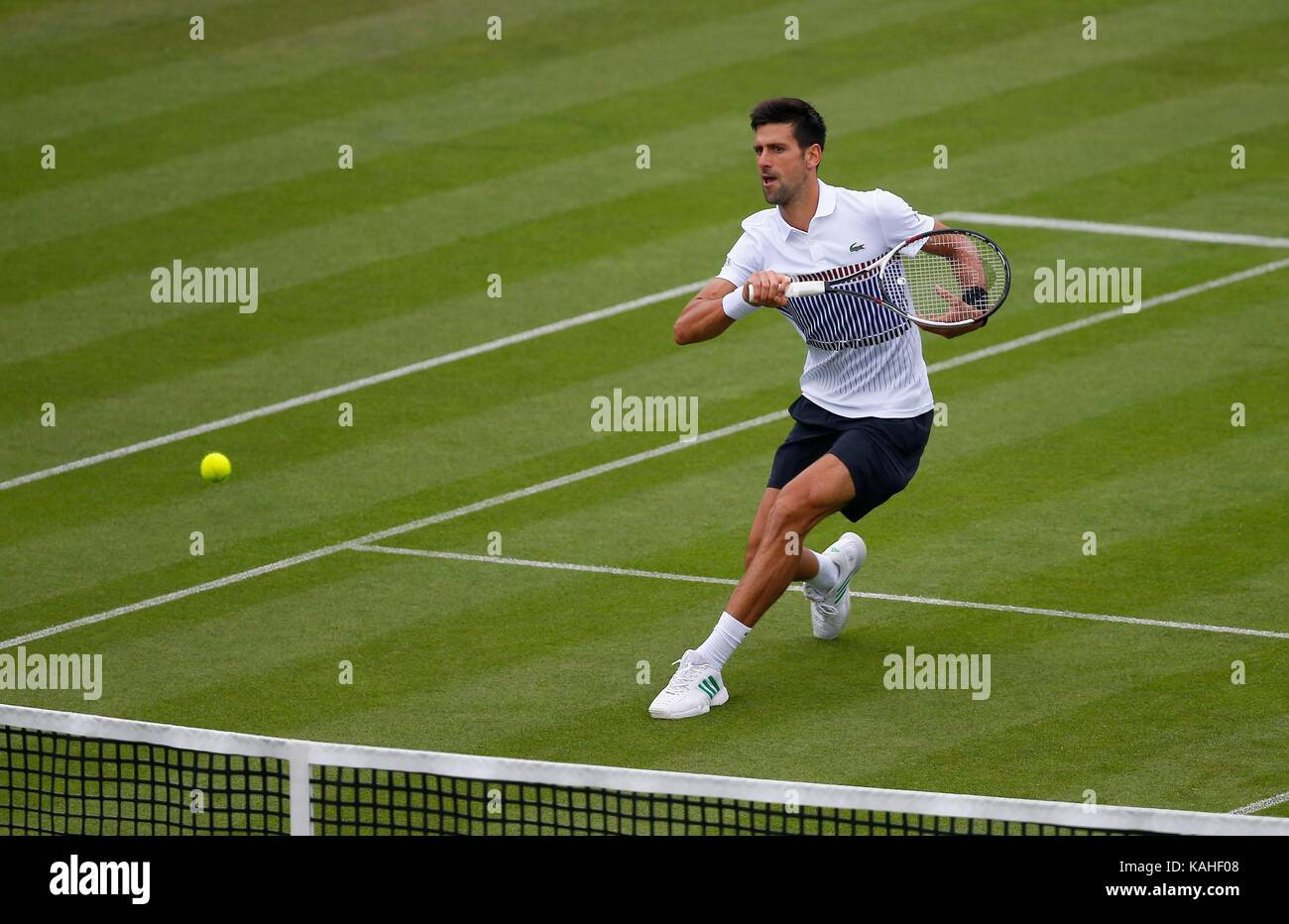 Novak Djokovic of Serbia in action during his match against Vasek Pospisil of Canada on day six of the Aegon International - Stock Image