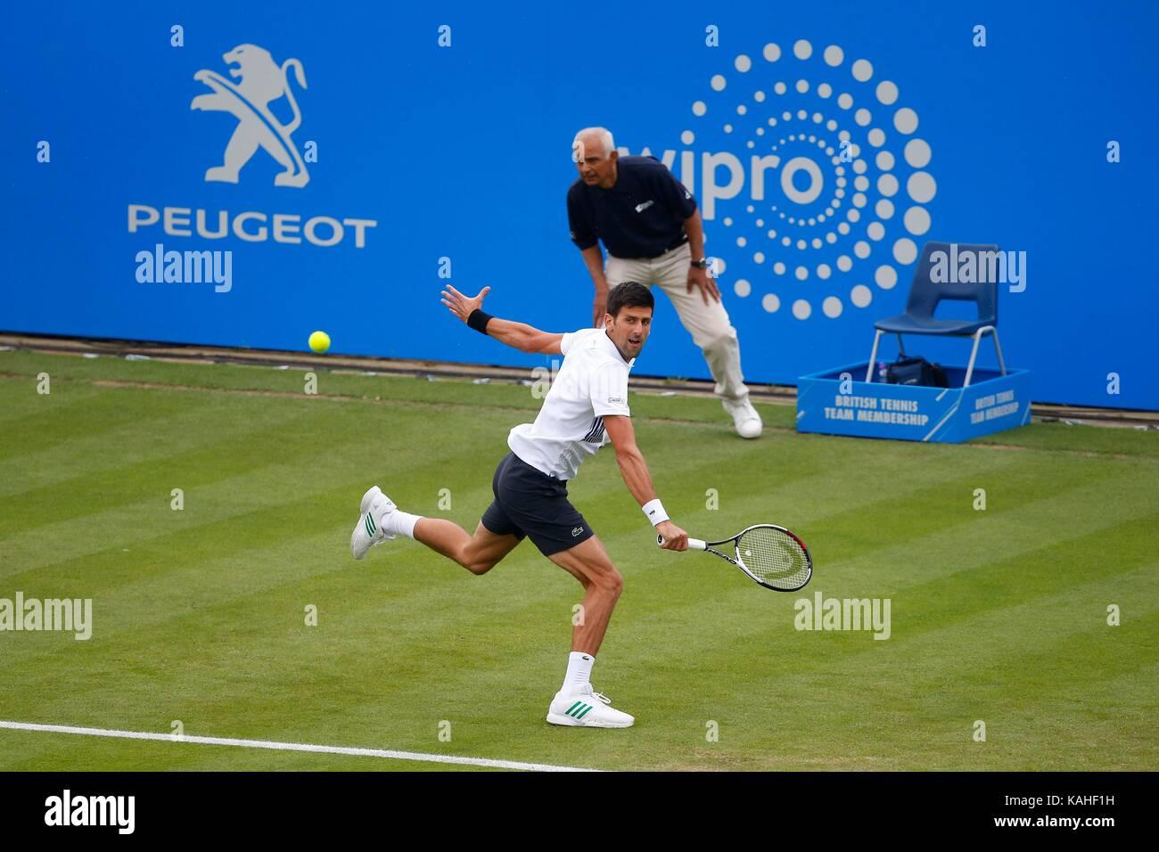 Serbian Novak Djokovic in action against Canadian Vasek Pospisil on day five of the Aegon International at Devonshire - Stock Image