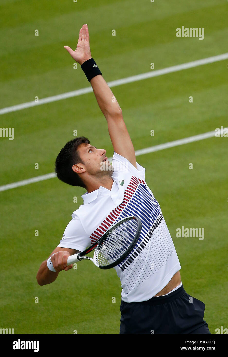 Serbian Novak Djokovic serves against Canadian Vasek Pospisil on day five of the Aegon International at Devonshire - Stock Image