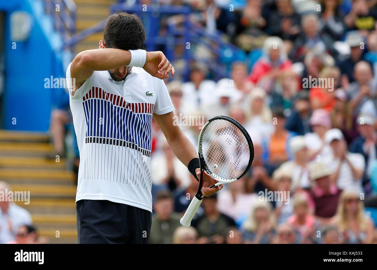 Novak Djokovic of Serbia v Gael Monfils of France during the mens final of the Aegon International at Devonshire - Stock Image