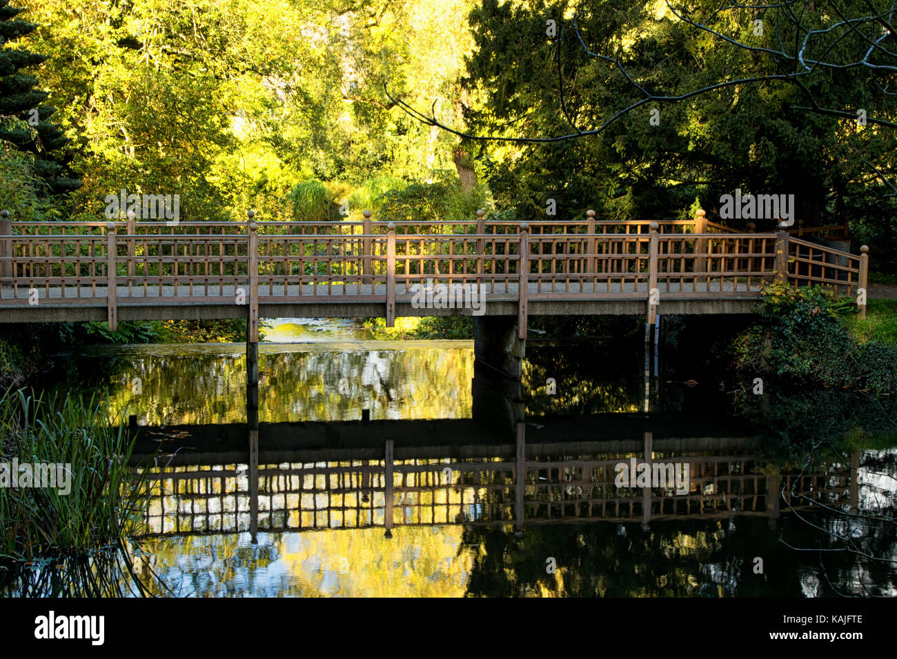 Wooden bridge over the Fish Pond in the grounds of Harewood House,Leeds,West Yorkshire,England,UK. - Stock Image