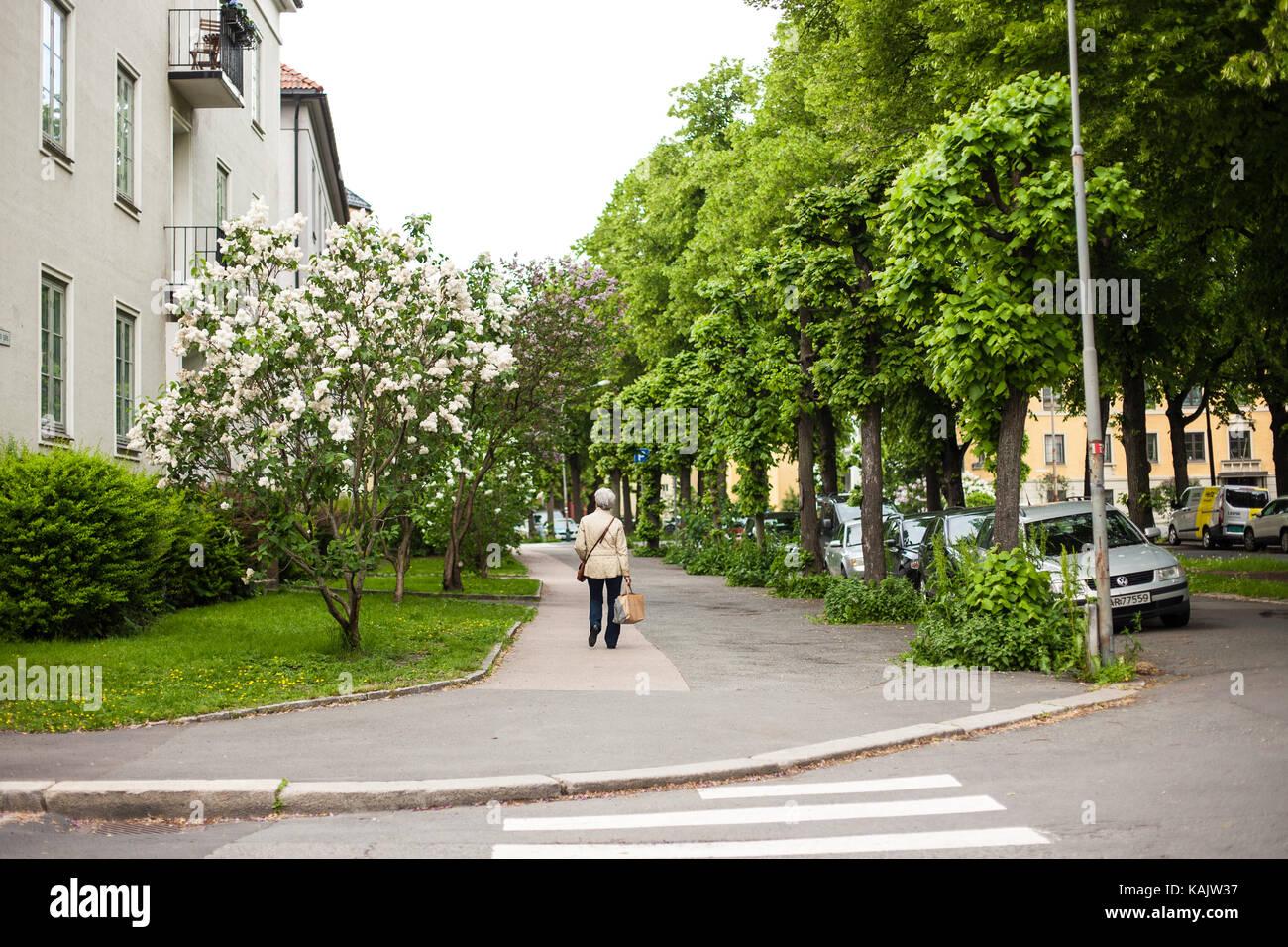 An elderly woman crosses the street in Oslo, Norway - Stock Image