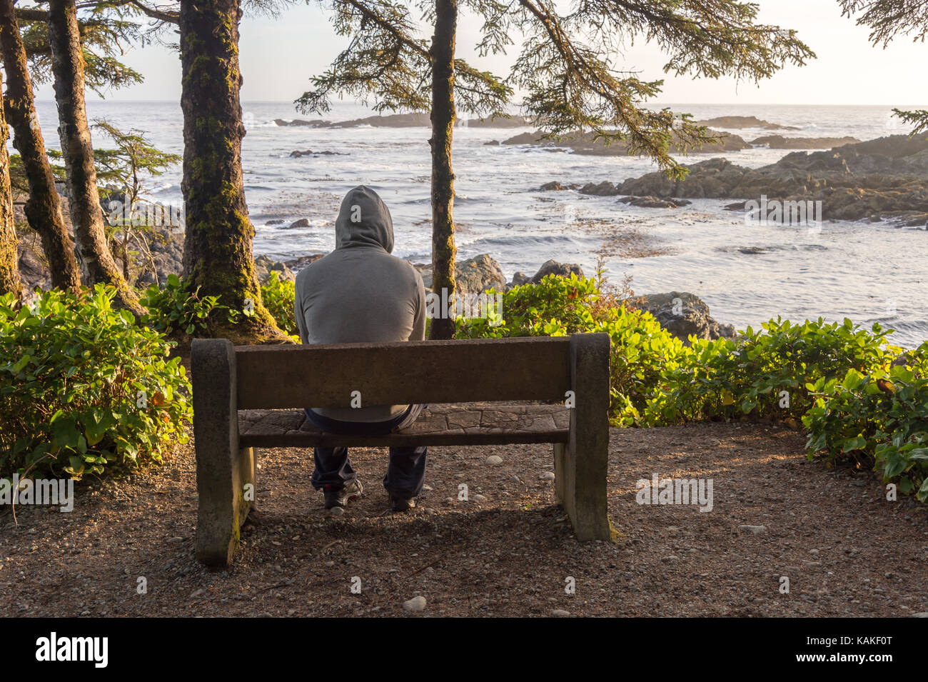 Man sitting on bench overlooking sea on Vancouver Island at sunset - Stock Image