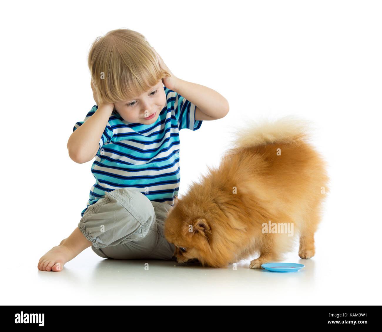 surprised child boy with dog - Stock Image