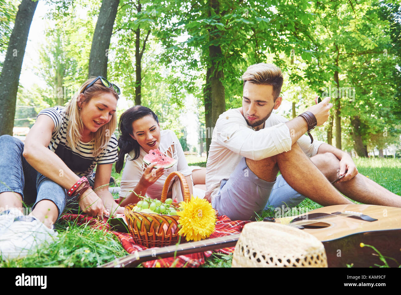 Group of friends having pic-nic in a park on a sunny day - People hanging out, having fun while grilling and relaxing - Stock Image