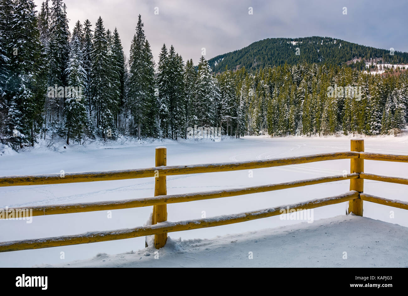 wooden pier on forest lake in winter. beautiful morning scenery in