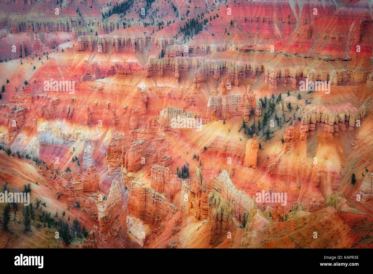 Iron and magnesium oxides create these stunning red and purple colors among the hoodoo amphitheater in Utah's Cedar - Stock Image